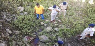 Murder with a knife, Murder of janitor, murder of watchman, Siwan News